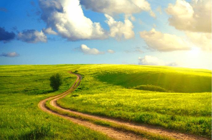 The Happy Path